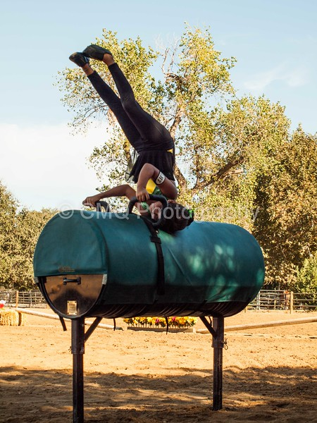 2016_Vaulting_Camelot_(178_of_614)