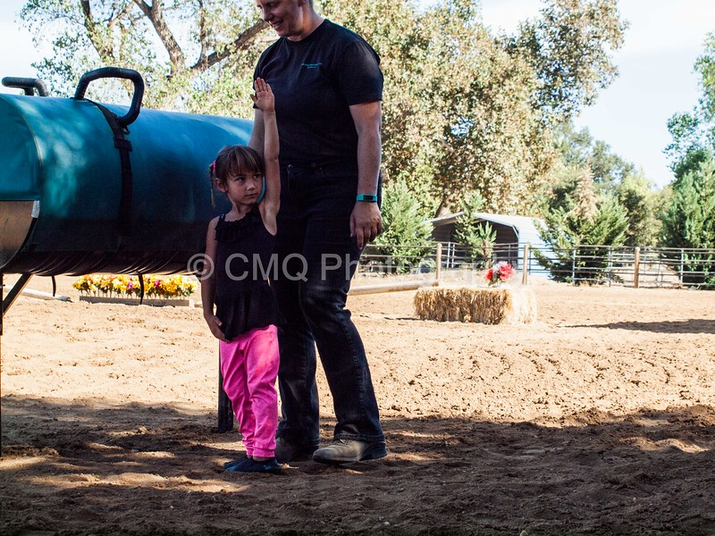 2016_Vaulting_Camelot_(38_of_614)