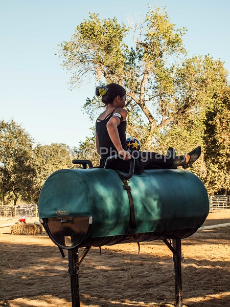 2016_Vaulting_Camelot_(538_of_614)