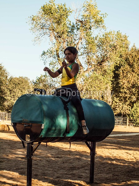 2016_Vaulting_Camelot_(504_of_614)