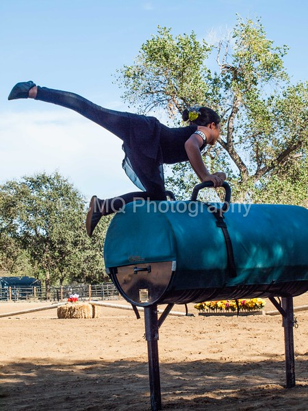 2016_Vaulting_Camelot_(149_of_614)