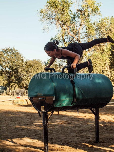 2016_Vaulting_Camelot_(483_of_614)