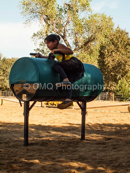 2016_Vaulting_Camelot_(170_of_614)