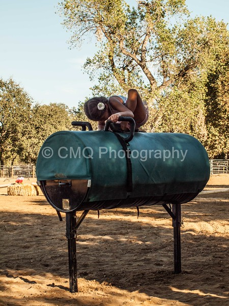2016_Vaulting_Camelot_(426_of_614)