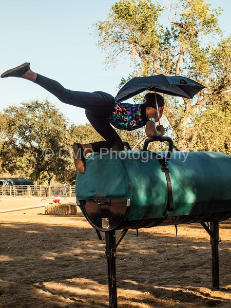 2016_Vaulting_Camelot_(525_of_614)