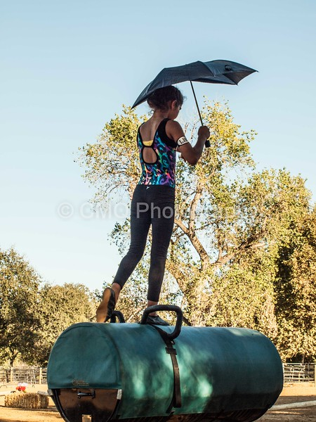 2016_Vaulting_Camelot_(527_of_614)