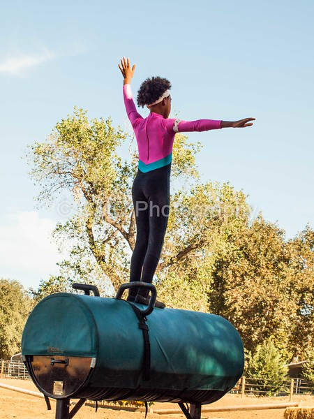 2016_Vaulting_Camelot_(201_of_614)