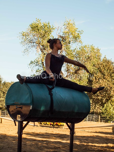 2016_Vaulting_Camelot_(288_of_614)
