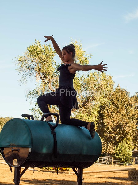 2016_Vaulting_Camelot_(298_of_614)