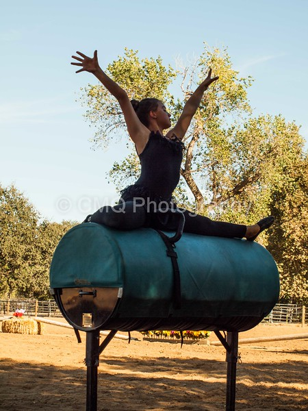 2016_Vaulting_Camelot_(300_of_614)