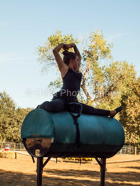 2016_Vaulting_Camelot_(301_of_614)