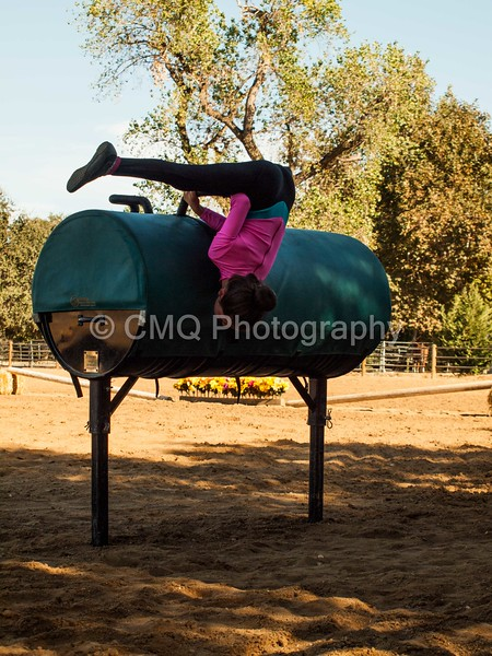 2016_Vaulting_Camelot_(220_of_614)