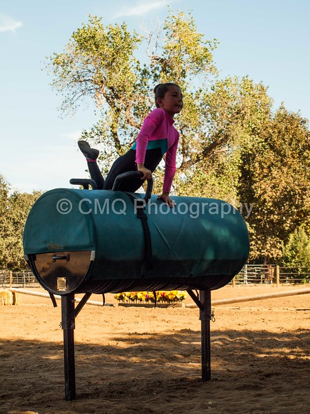 2016_Vaulting_Camelot_(221_of_614)