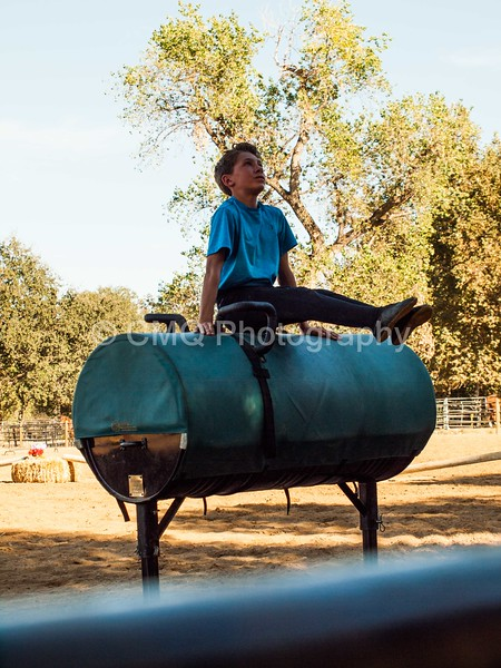 2016_Vaulting_Camelot_(322_of_614)