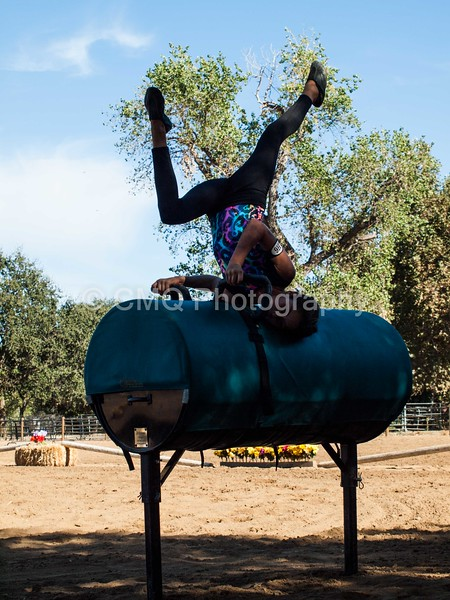 2016_Vaulting_Camelot_(129_of_614)