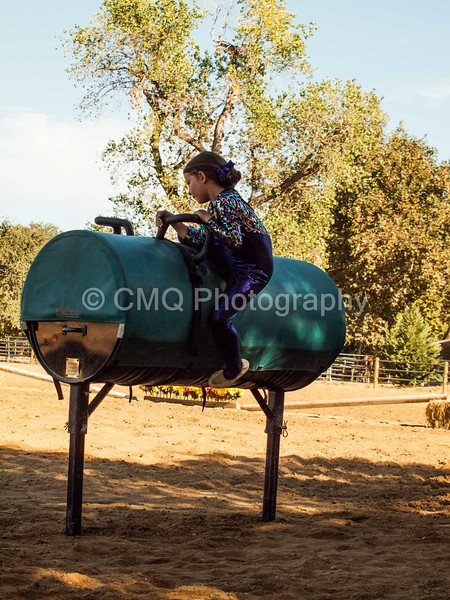 2016_Vaulting_Camelot_(183_of_614)