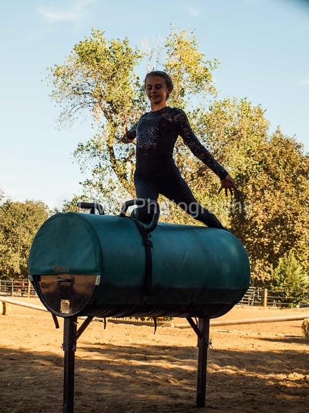 2016_Vaulting_Camelot_(269_of_614)