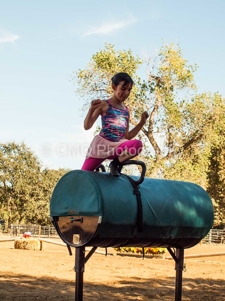 2016_Vaulting_Camelot_(208_of_614)