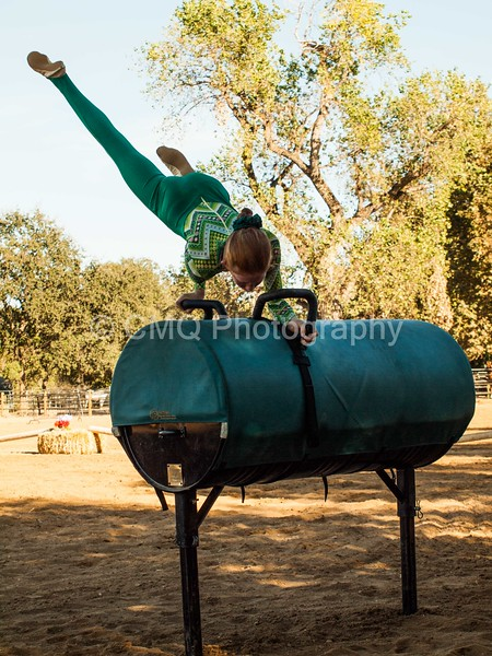 2016_Vaulting_Camelot_(356_of_614)
