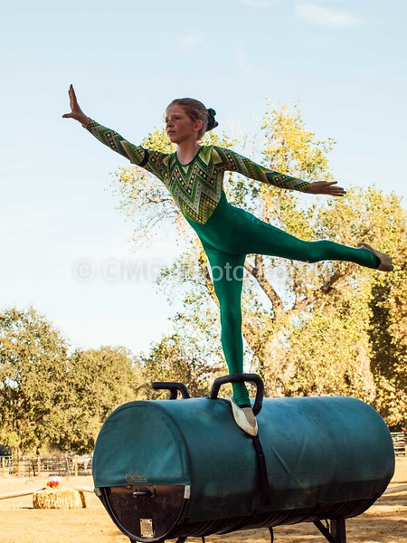 2016_Vaulting_Camelot_(359_of_614)