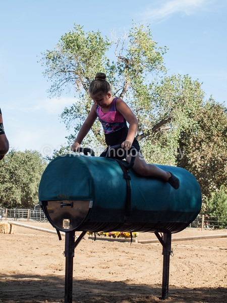 2016_Vaulting_Camelot_(63_of_614)