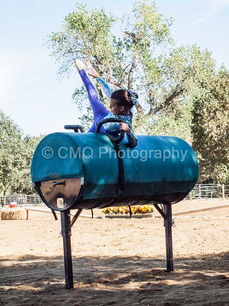 2016_Vaulting_Camelot_(82_of_614)