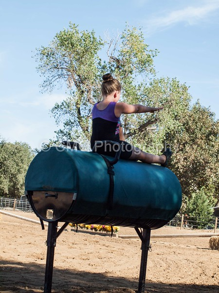 2016_Vaulting_Camelot_(69_of_614)