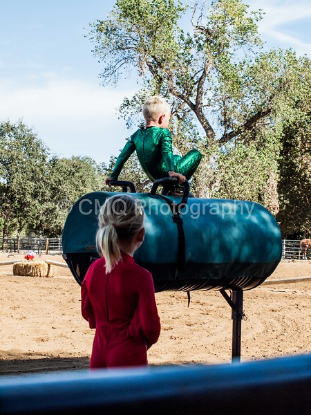 2016_Vaulting_Camelot_(4_of_614)