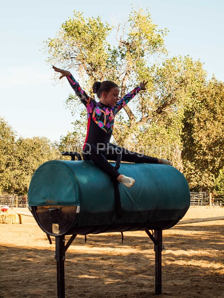 2016_Vaulting_Camelot_(343_of_614)