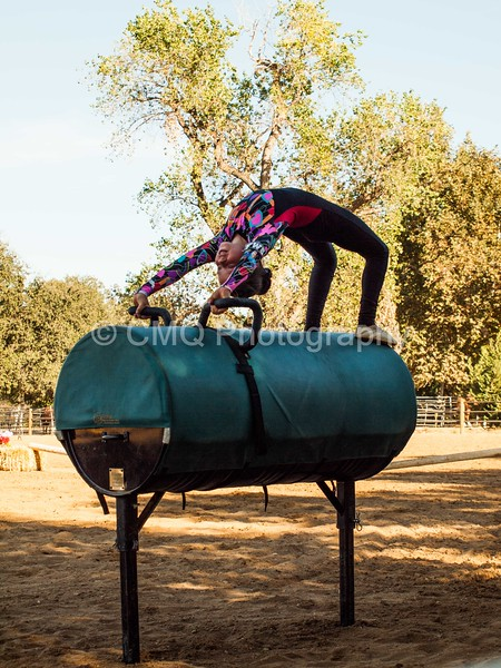 2016_Vaulting_Camelot_(345_of_614)