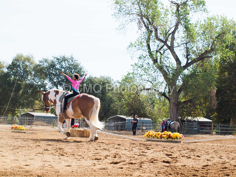 2016_Vaulting_Camelot_(1212_of_3844)