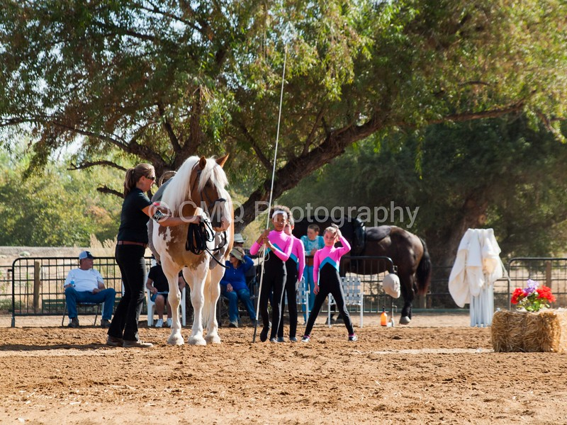 2016_Vaulting_Camelot_(1204_of_3844)