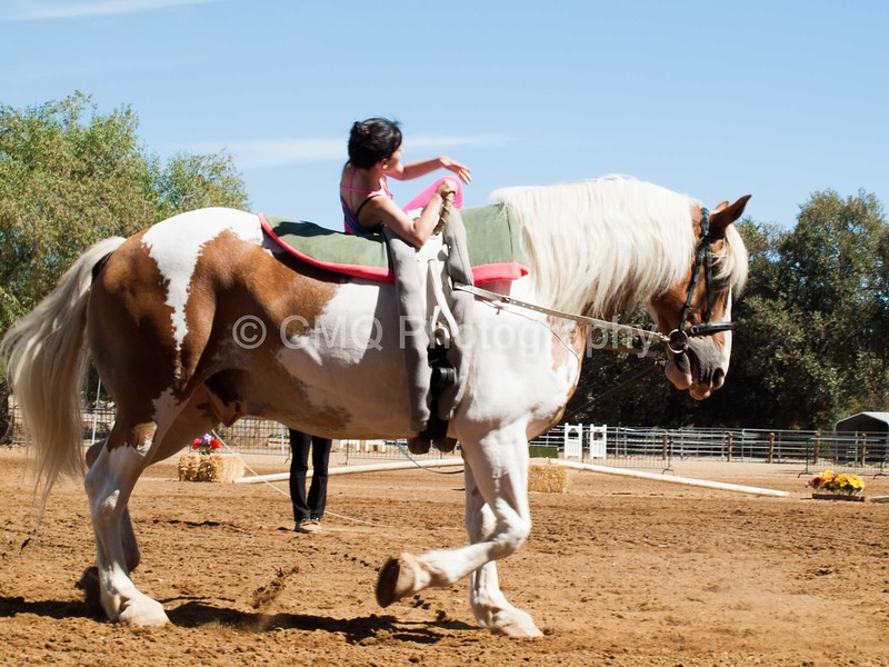 2016_Vaulting_Camelot_(2439_of_3844)