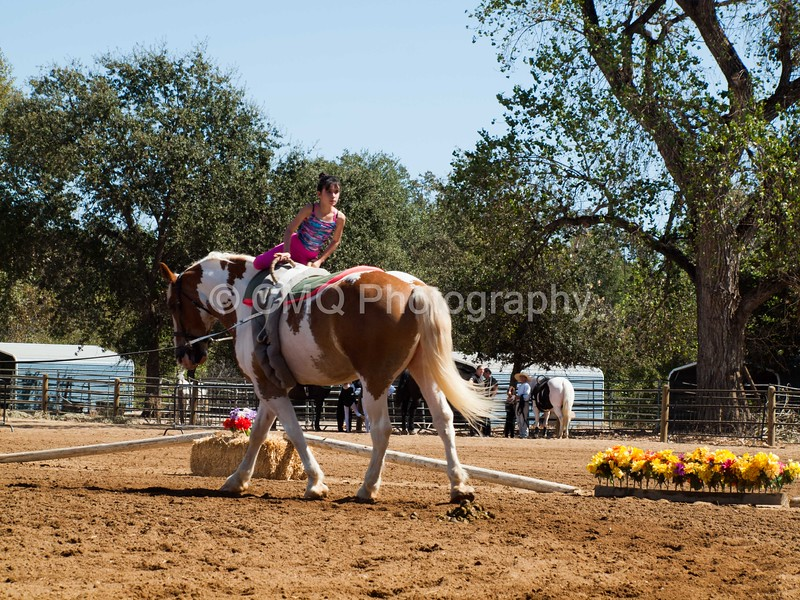 2016_Vaulting_Camelot_(2443_of_3844)