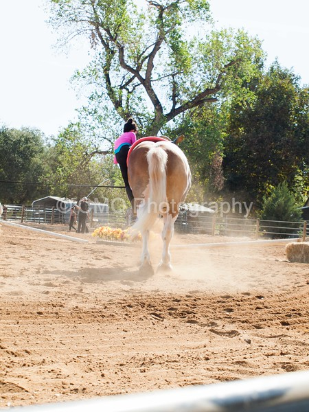 2016_Vaulting_Camelot_(1231_of_3844)