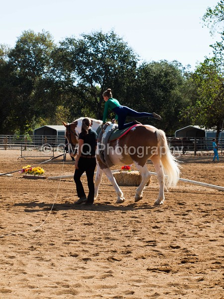2016_Vaulting_Camelot_(1449_of_3844)