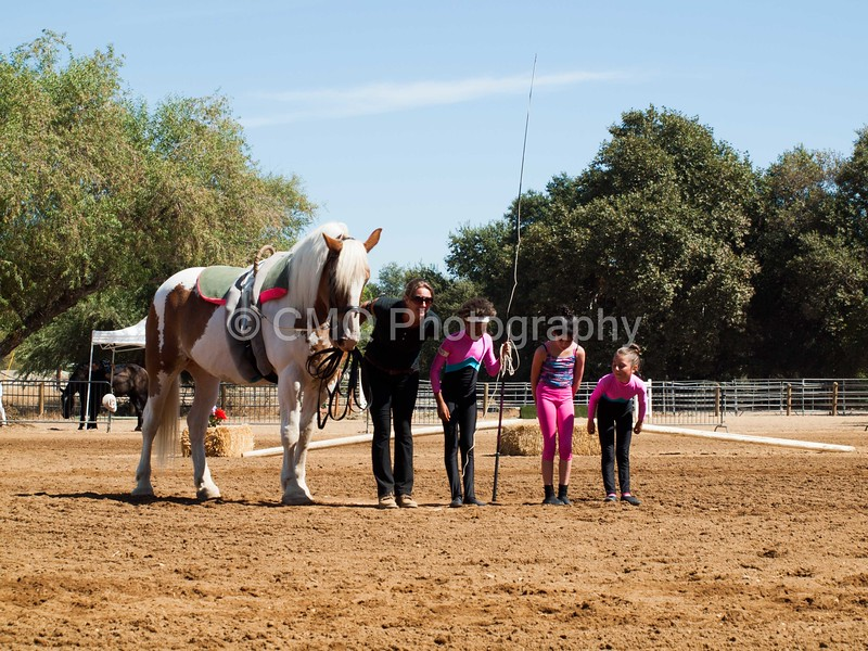 2016_Vaulting_Camelot_(2477_of_3844)