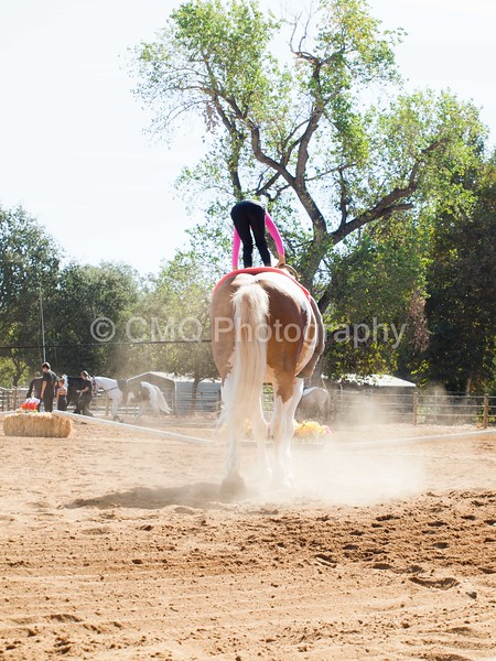 2016_Vaulting_Camelot_(1271_of_3844)
