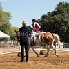 2016_Vaulting_Camelot_(2433_of_3844)