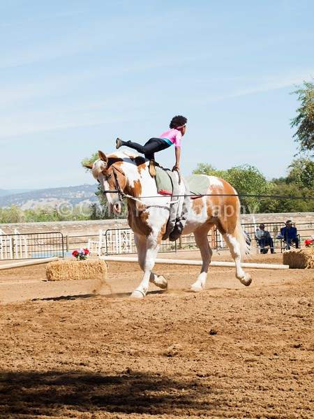 2016_Vaulting_Camelot_(2426_of_3844)