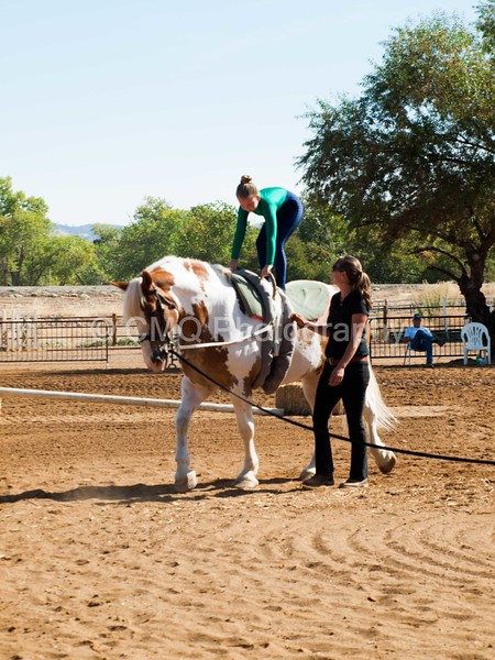 2016_Vaulting_Camelot_(1455_of_3844)