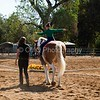 2016_Vaulting_Camelot_(1446_of_3844)