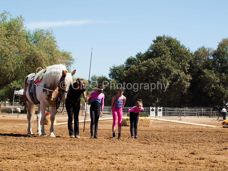 2016_Vaulting_Camelot_(2413_of_3844)