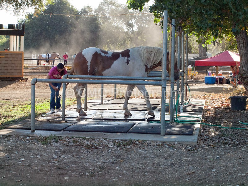 2016_Vaulting_Camelot_(6_of_3844)
