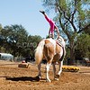 2016_Vaulting_Camelot_(2450_of_3844)
