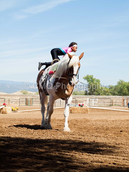 2016_Vaulting_Camelot_(2421_of_3844)