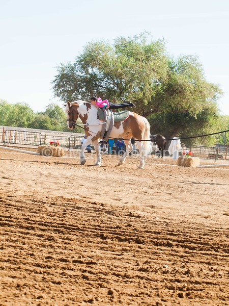 2016_Vaulting_Camelot_(1249_of_3844)