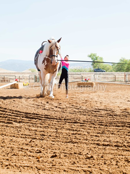 2016_Vaulting_Camelot_(1256_of_3844)