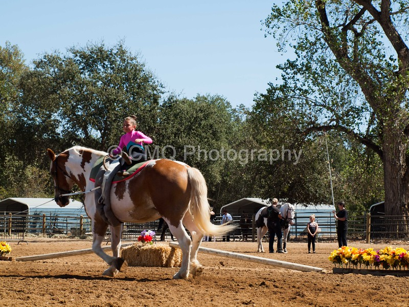2016_Vaulting_Camelot_(2476_of_3844)