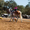 2016_Vaulting_Camelot_(2424_of_3844)